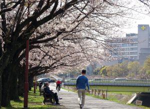 鳥山川沿いの新横浜駅前公園はあと少し